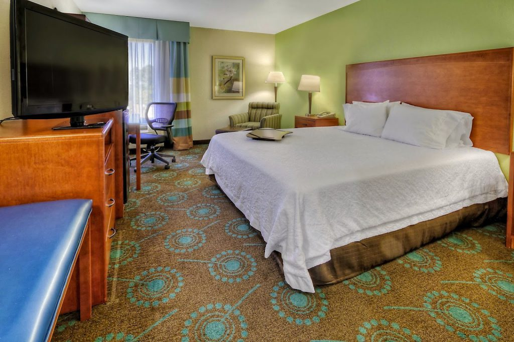 Hampton Inn Goldsboro King Room
